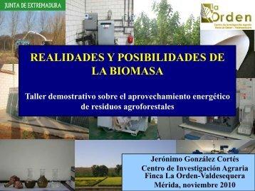 REALIDADES Y POSIBILIDADES DE LA BIOMASA - Altercexa