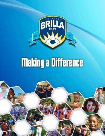 brilla brochure 2014 (web)