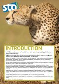 egypt - STA Travel - Page 2