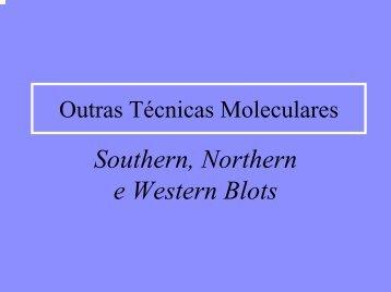 Aula 2 -Outras Técnicas Moleculares