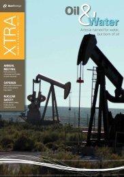 June 2011 - Volume 11 - Xcel Energy