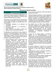 Semilla para Siembra de Soya - Financiera Rural