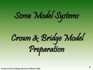 Model Systems and Model Preparation - Randwick College Wiki