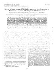 Rescue of Bacteriophage T7 DNA Polymerase of Low Processivity ...
