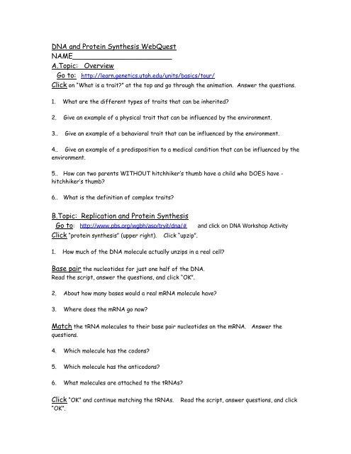 Genetics Webquest Worksheet Answers - Worksheet List