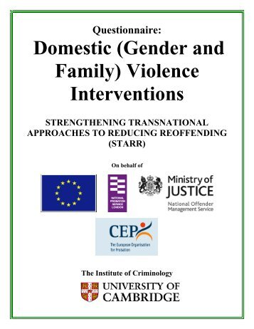 Dissertation literature reviews examples domestic violence