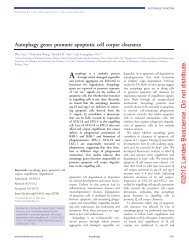 Autophagy genes promote apoptotic cell corpse clearance - Landes ...