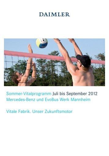 vifa - SG Stern Mannheim