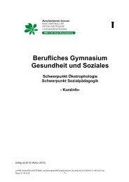 I Kurzinfo ab 2012 BGYM 12 -ABI 2015 - und Realschule Sickte