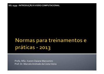 Normas para treinamentos e praticas.pptx - Iris.sel.eesc.sc.usp.br