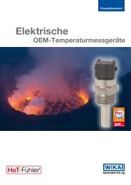 TF45 elektrische Temperaturfühler mit Litzen - MANOMETER AG