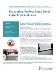 Preventing Outdoor Same Level Slips, Trips and Falls