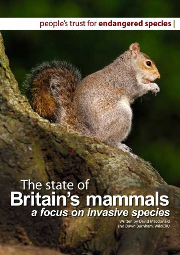 The state of Britain's mammals - People's Trust for Endangered ...
