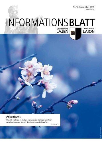 Informationsblatt 12/2011 (2,64 MB)