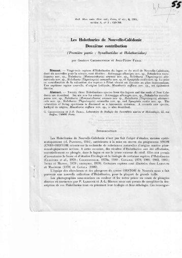 Les Holothuries de Nouvelle-Calédonie Deuxième contribution