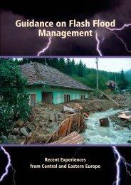 Guidance - The Associated Programme on Flood Management