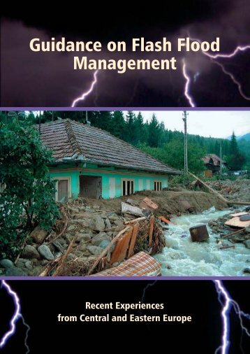 Guidance - The Associated Programme on Flood Management