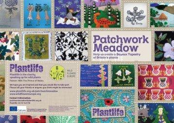 Plantlife-Patchwork-meadow - Wildflower Europe