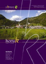 HORUK Ausgabe 11 - Gemeinde St. Katharein an der Laming