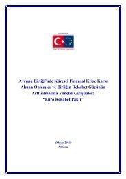 Avrupa Birliği'nde Küresel Finansal Krize Karşı Alınan Önlemler ve ...