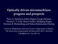 Optically driven micromachines - Physics - University of Queensland