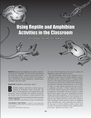 Using reptile and amphibian activities in your classroom - The Herp ...