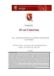 La 3G au Cameroun - Base de connaissance AEGE