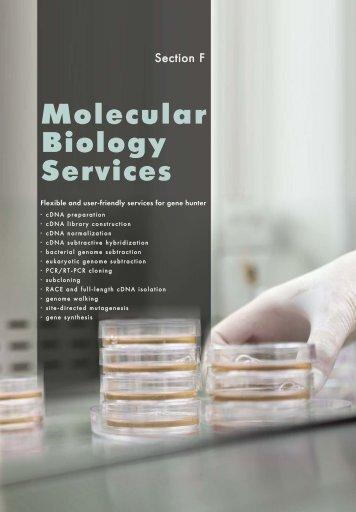 Molecular Biology Services - Evrogen