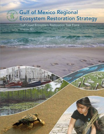 Gulf of Mexico Regional Ecosystem Restoration Strategy - US ...