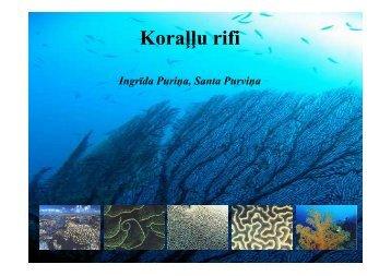 Koraļļu rifi
