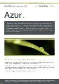 Azurcapital garanti - Derivatives Capital - Page 2