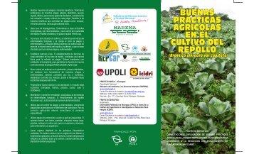 TRIPTICO REPOLLO.pdf - UNEP