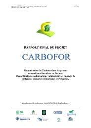RAPPORT FINAL DU PROJET - GIP-Ecofor