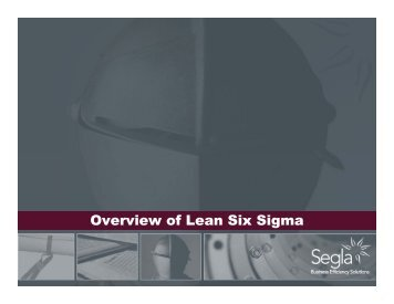 Lean Six Sigma - Segla International