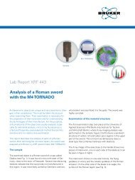 Lab Report XRF 443 Analysis of a Roman sword with the ... - Bruker