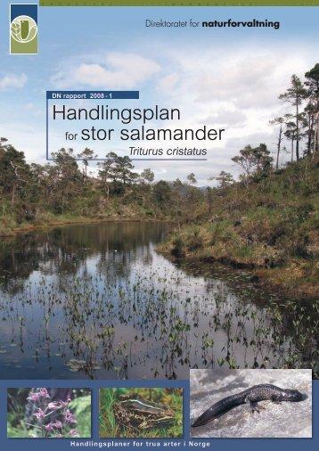 Handlingsplan for stor salamander - Regional Red List