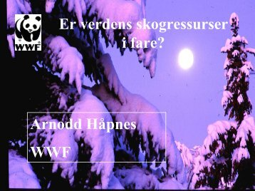 Verdens skoger i fare - WWF