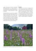 Handlingsplan for slåttemark - Page 7