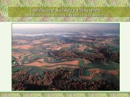 Landscape Ecology Principles - River Basin Center at the University ...