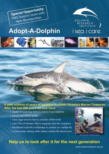 Adopt-A-Dolphin - Dolphin Research Institute