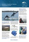Adopt-A-Dolphin - Dolphin Research Institute - Page 2