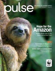 Amazon - World Wildlife Fund