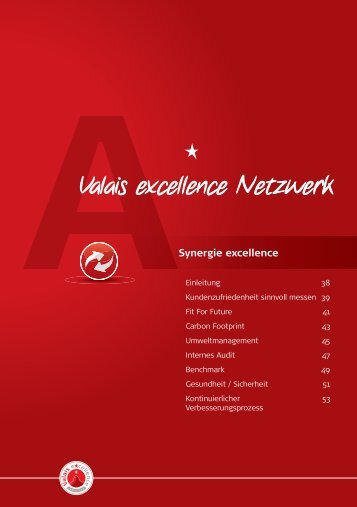 Internes Audit - Valais excellence