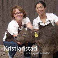 Ladda ner som pdf - Kristianstad