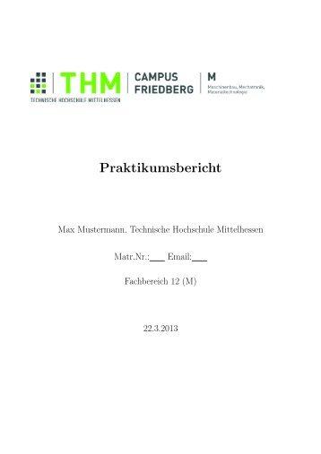 Vorlage für BPS-Berichte - Technische Hochschule Mittelhessen