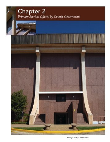 Primary Services Offered by County Government - Texas ...