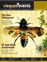 The Bee Whisperer - Vieques Events