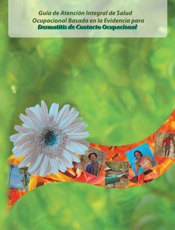 Guía de Atención Integral de Salud Ocupacional Basada en la ...
