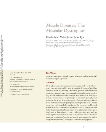 Muscle Diseases: The Muscular Dystrophies - CMGM Stanford ...