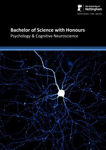 BrochureC850PsychCogNeuro - The University of Nottingham ...
